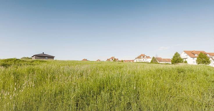 Grundstück mit Wiese verkaufen